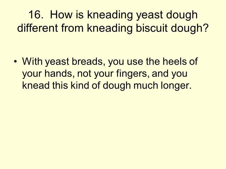 16. How is kneading yeast dough different from kneading biscuit dough