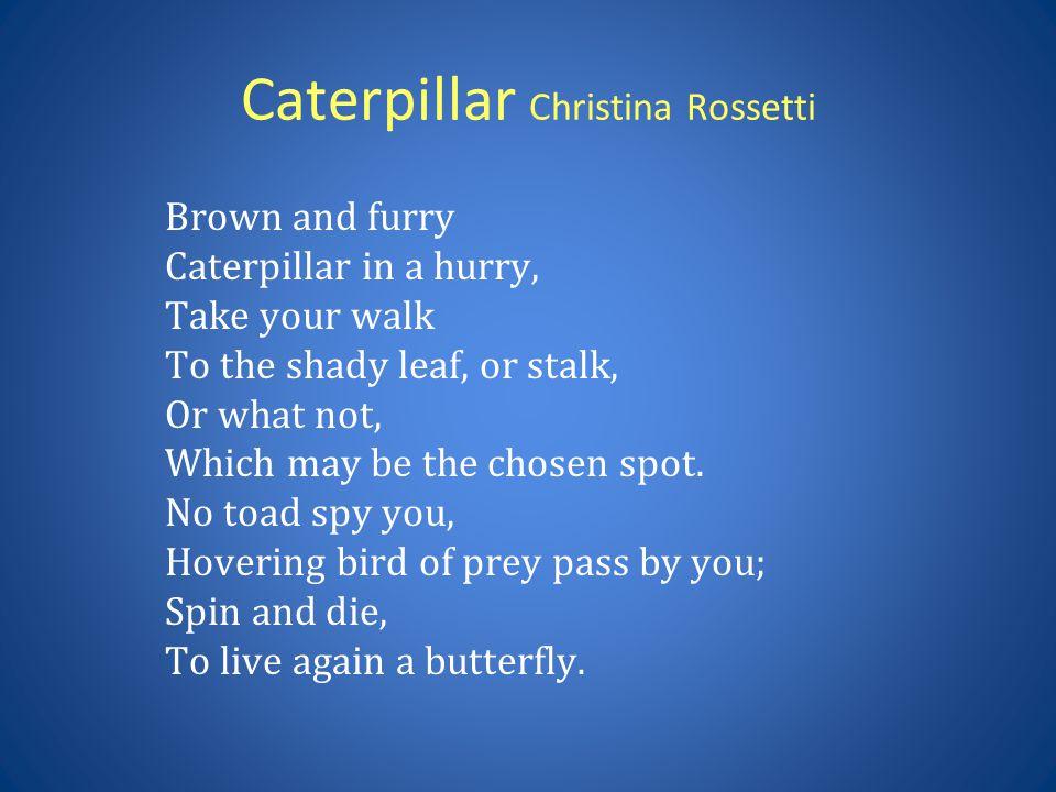 Caterpillar Christina Rossetti