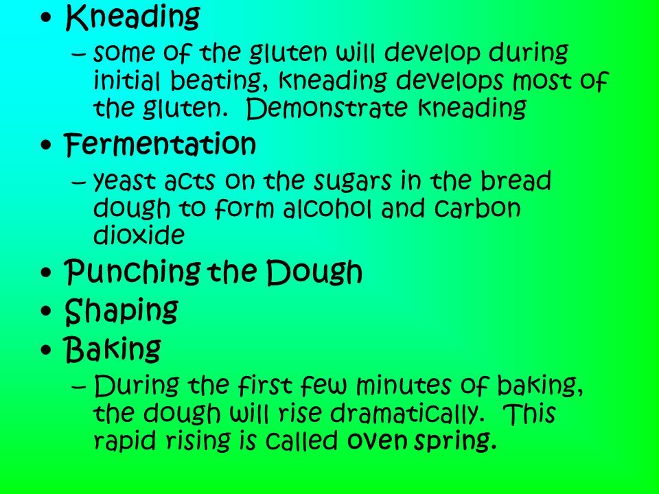 Kneading Fermentation Punching the Dough Shaping Baking