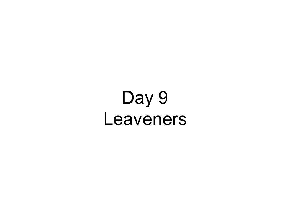 Day 9 Leaveners