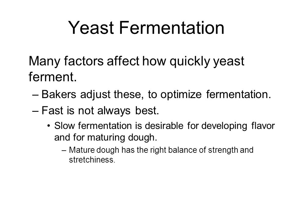 Yeast Fermentation Many factors affect how quickly yeast ferment.