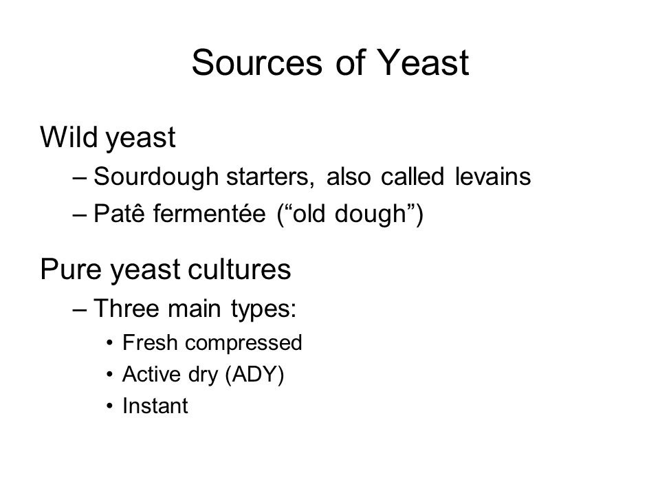 Sources of Yeast Wild yeast Pure yeast cultures