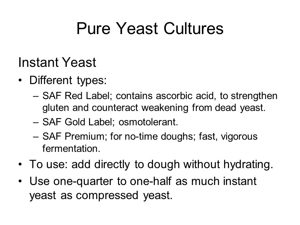 Pure Yeast Cultures Instant Yeast Different types: