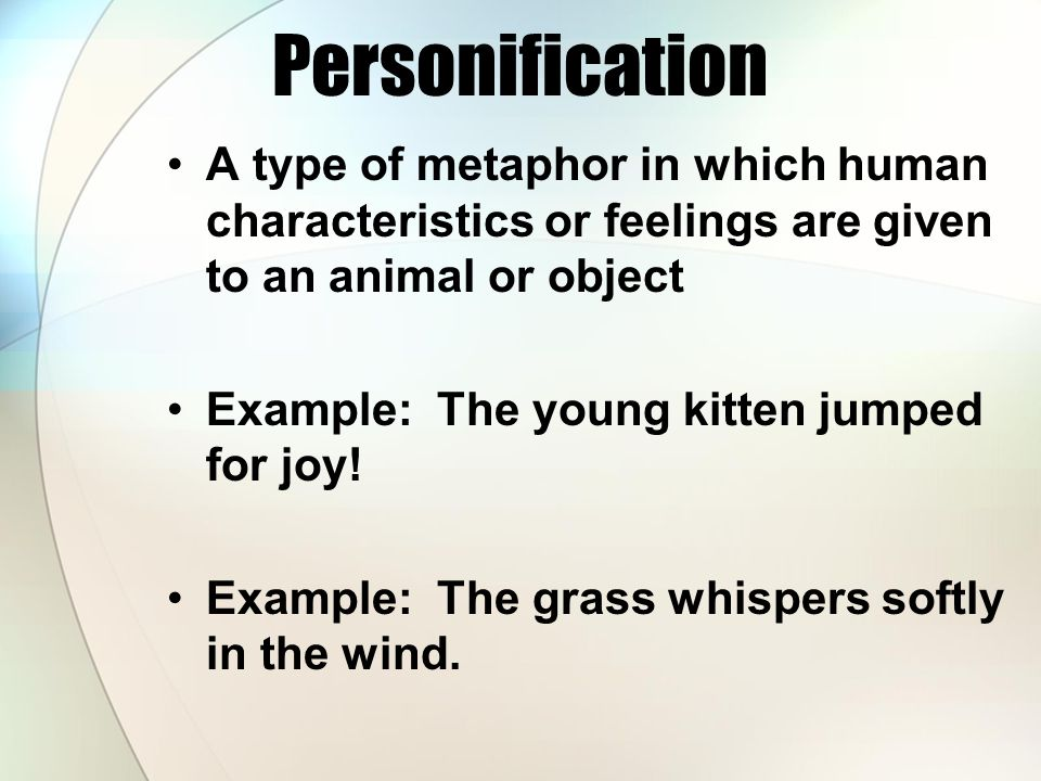 Personification A type of metaphor in which human characteristics or feelings are given to an animal or object.
