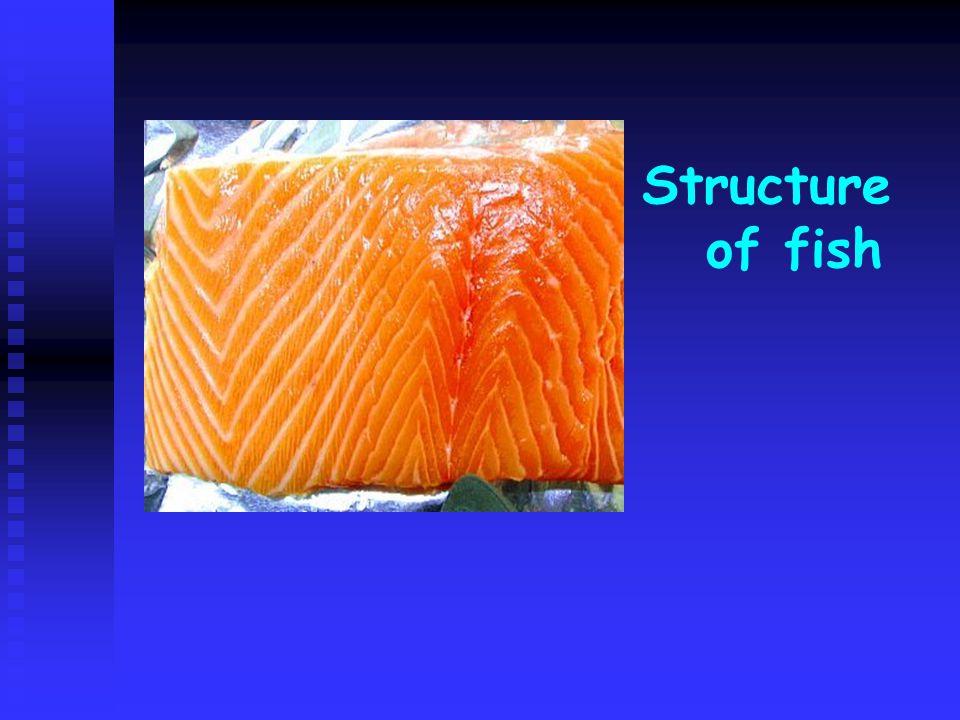 Structure of fish