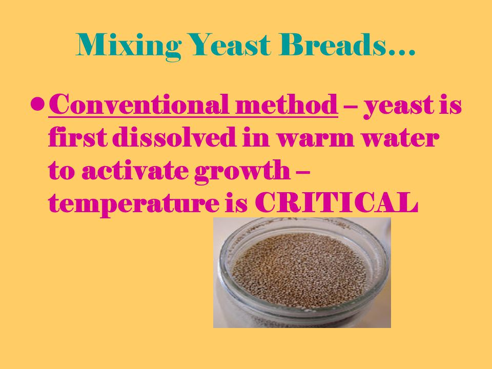Mixing Yeast Breads… Conventional method – yeast is first dissolved in warm water to activate growth – temperature is CRITICAL.