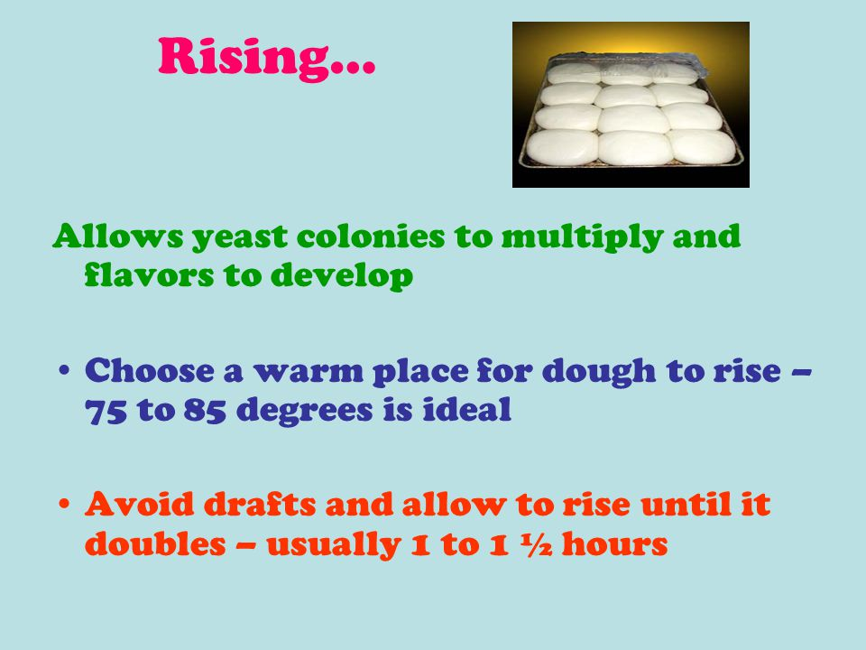 Rising… Allows yeast colonies to multiply and flavors to develop