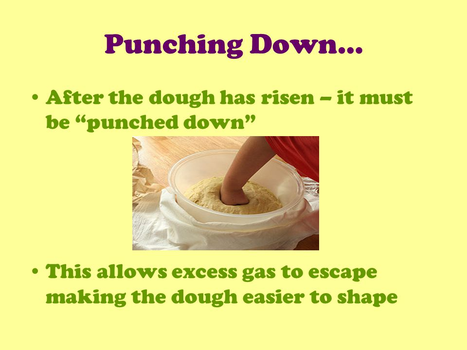 Punching Down… After the dough has risen – it must be punched down