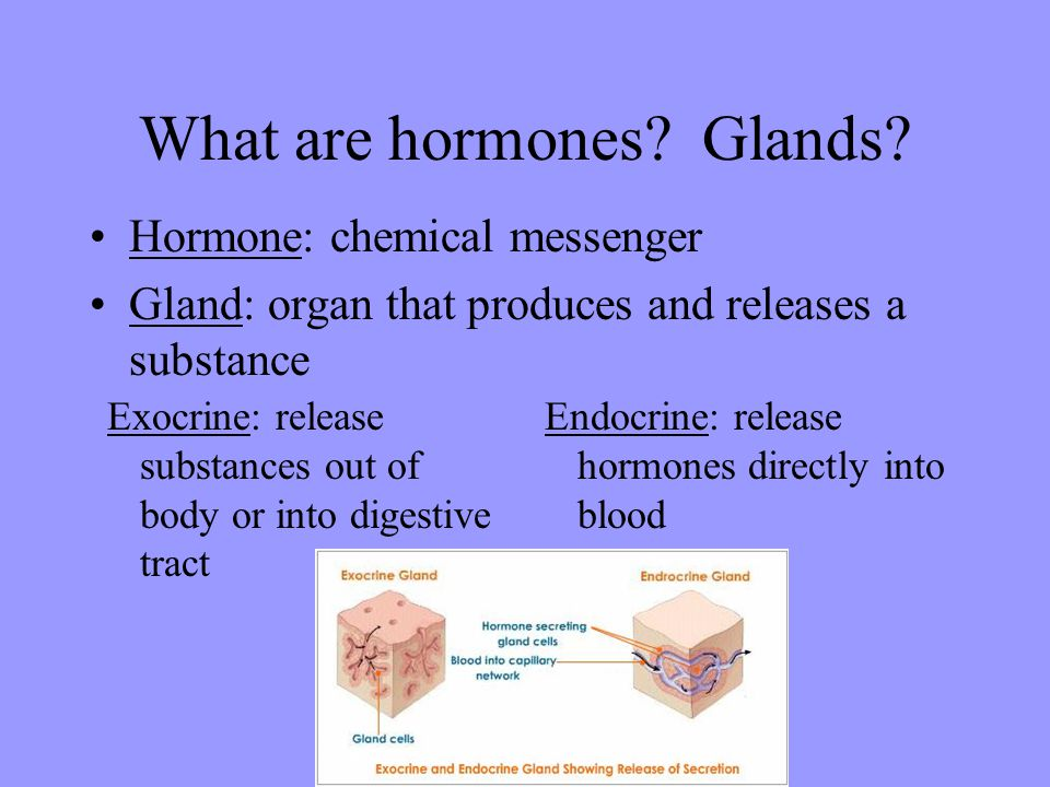 What are hormones Glands