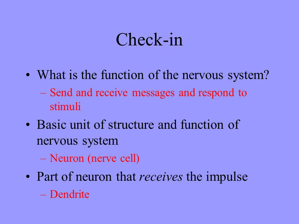 Check-in What is the function of the nervous system