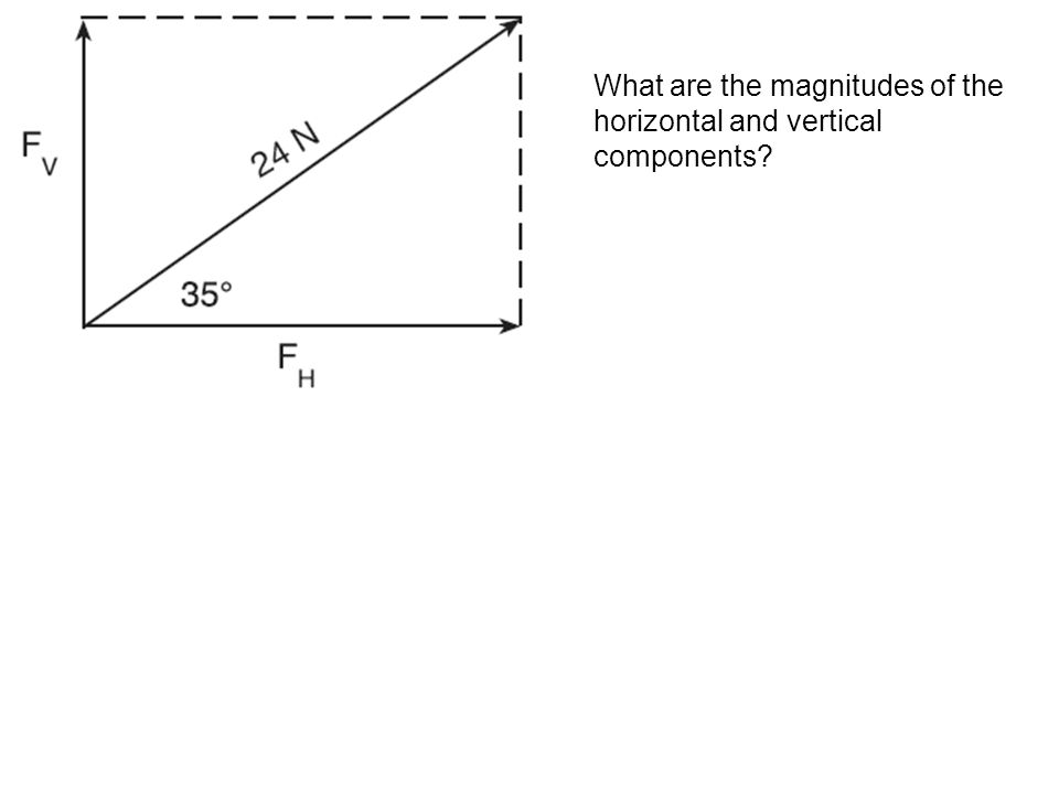 What are the magnitudes of the horizontal and vertical components