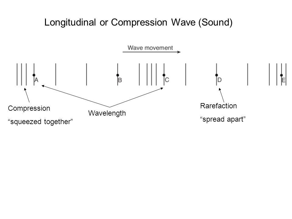 Longitudinal or Compression Wave (Sound)