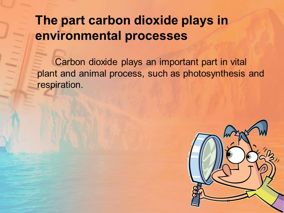 The part carbon dioxide plays in environmental processes