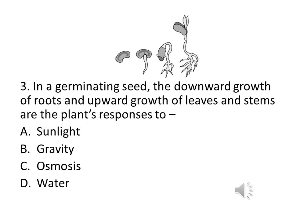 3. In a germinating seed, the downward growth of roots and upward growth of leaves and stems are the plant's responses to –