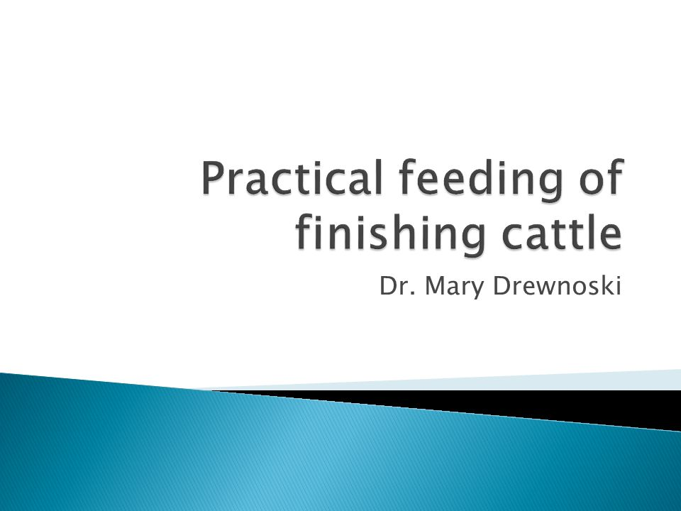 Practical feeding of finishing cattle
