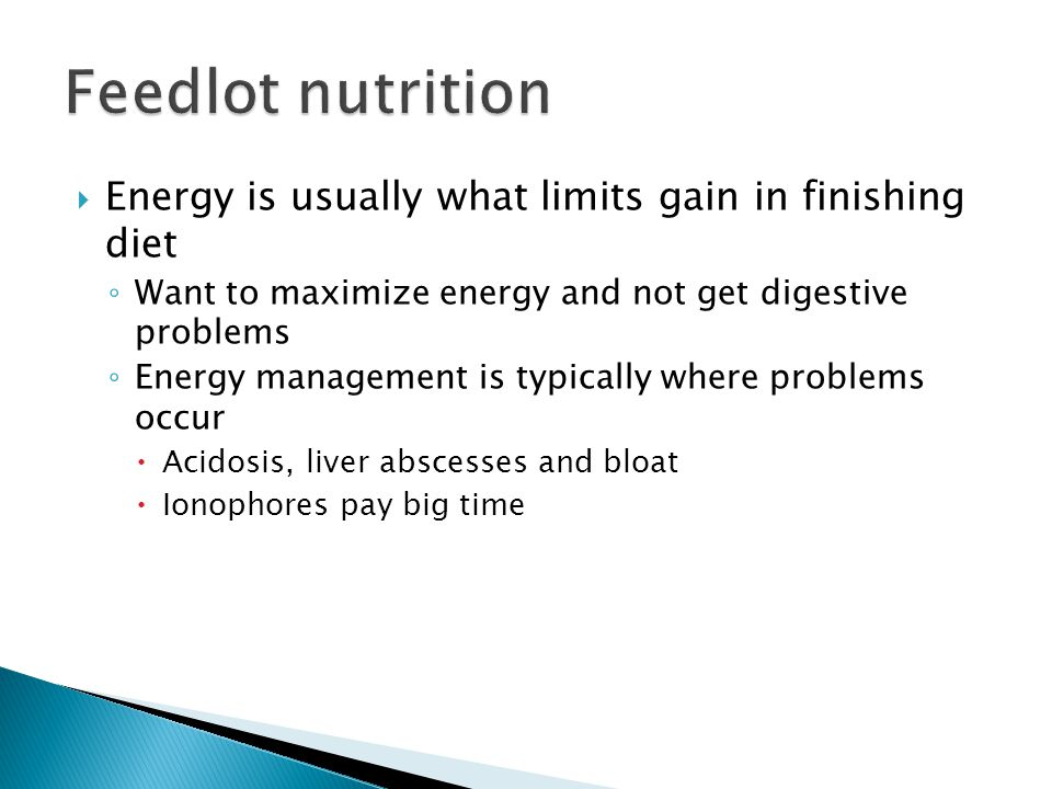 Feedlot nutrition Energy is usually what limits gain in finishing diet