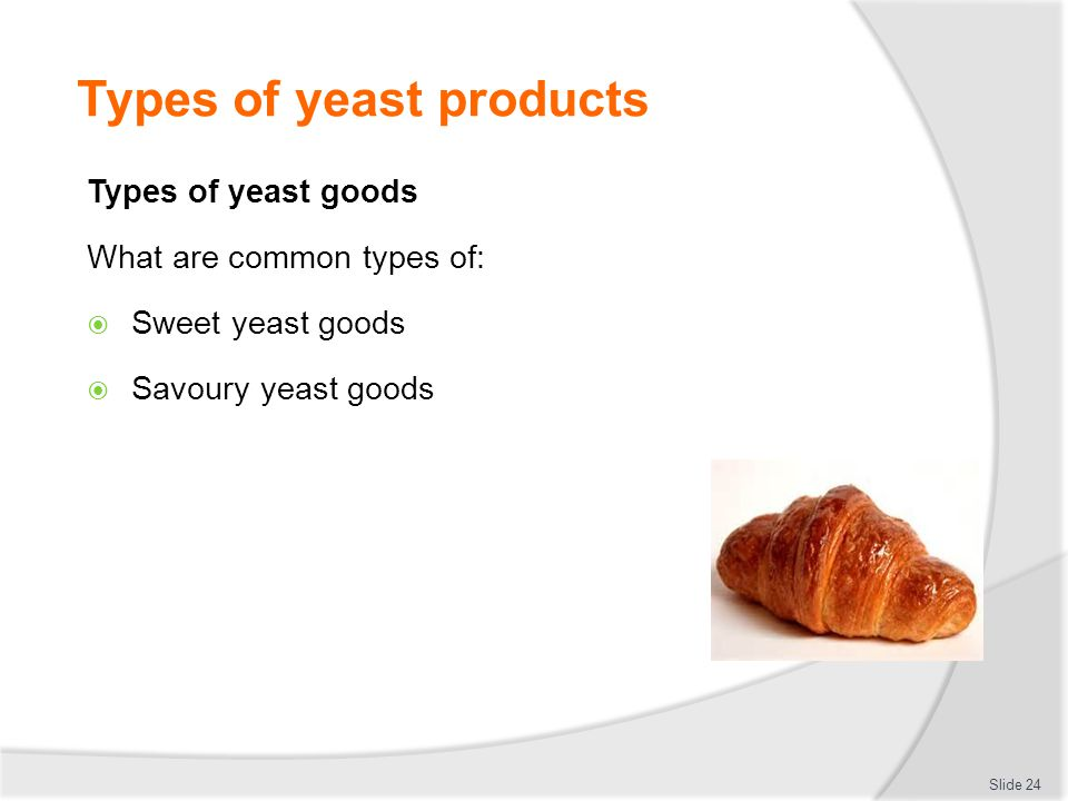 Types of yeast products