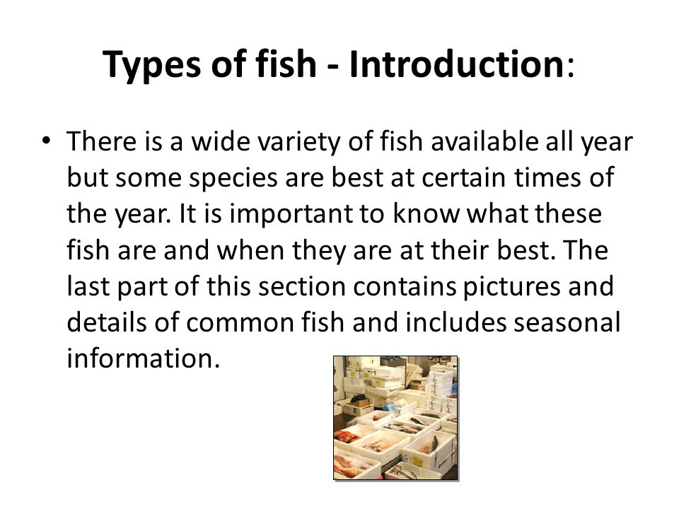 Types of fish - Introduction:
