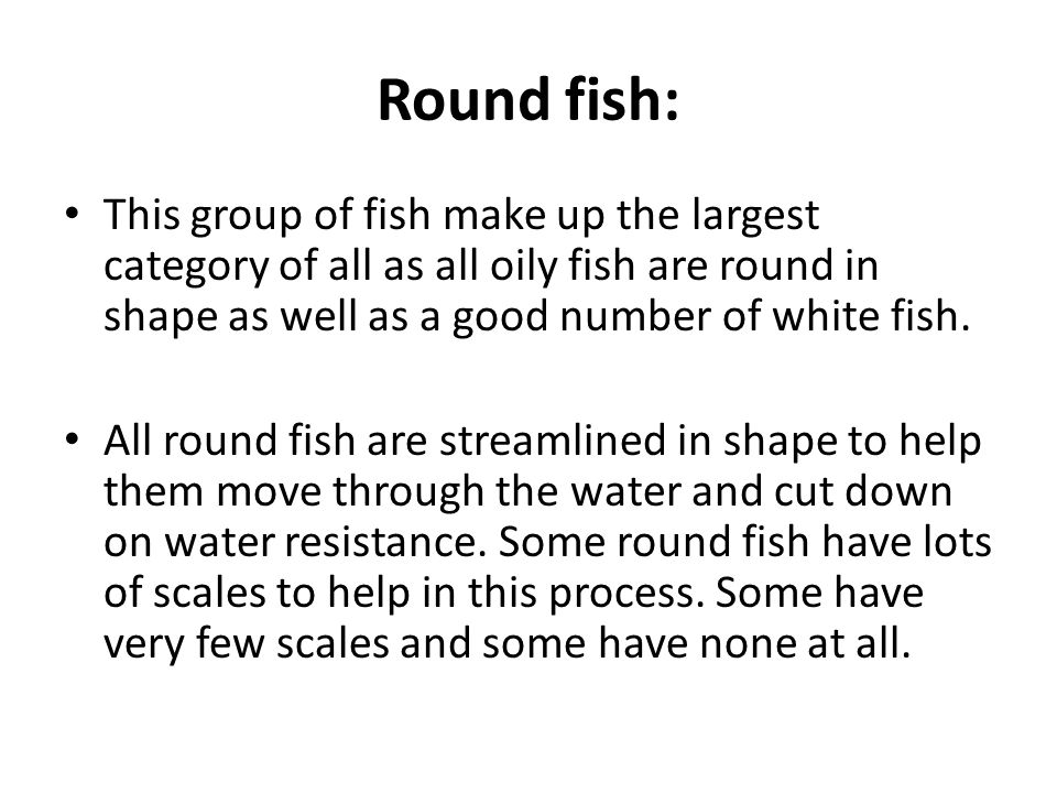 Round fish: This group of fish make up the largest category of all as all oily fish are round in shape as well as a good number of white fish.