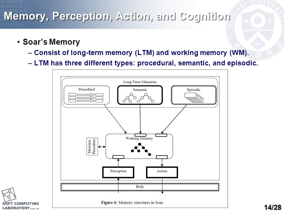 Memory, Perception, Action, and Cognition