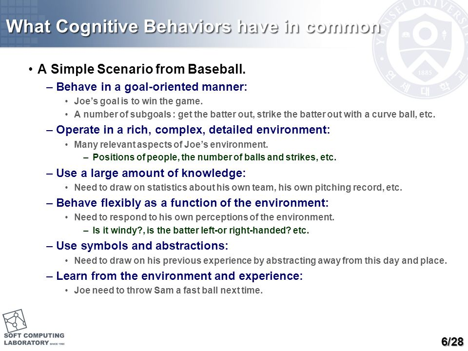 What Cognitive Behaviors have in common