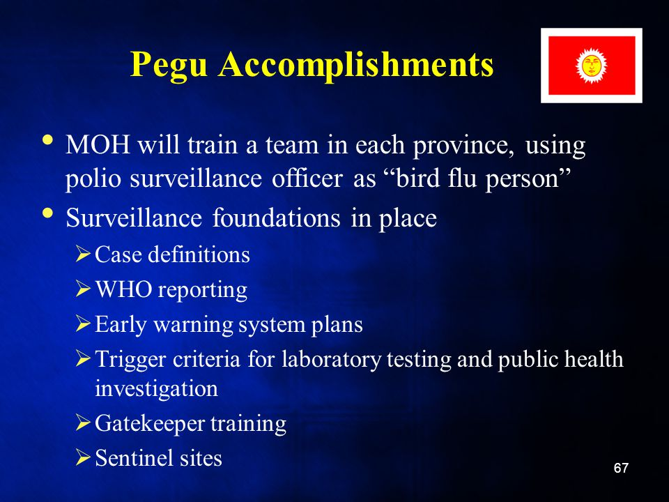 Pegu Accomplishments MOH will train a team in each province, using polio surveillance officer as bird flu person