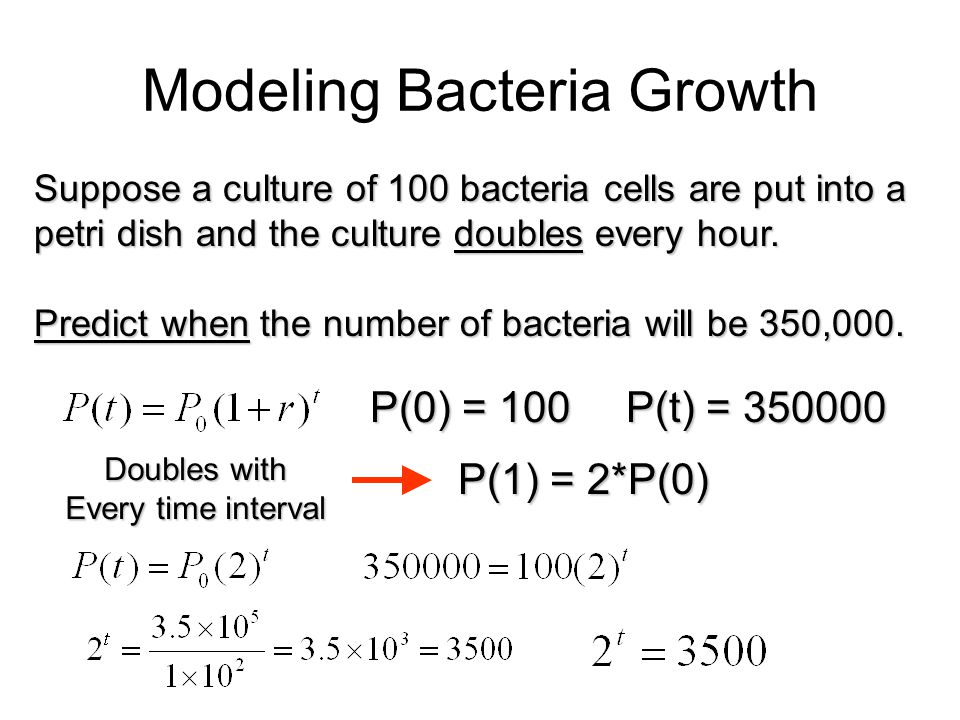 Modeling Bacteria Growth
