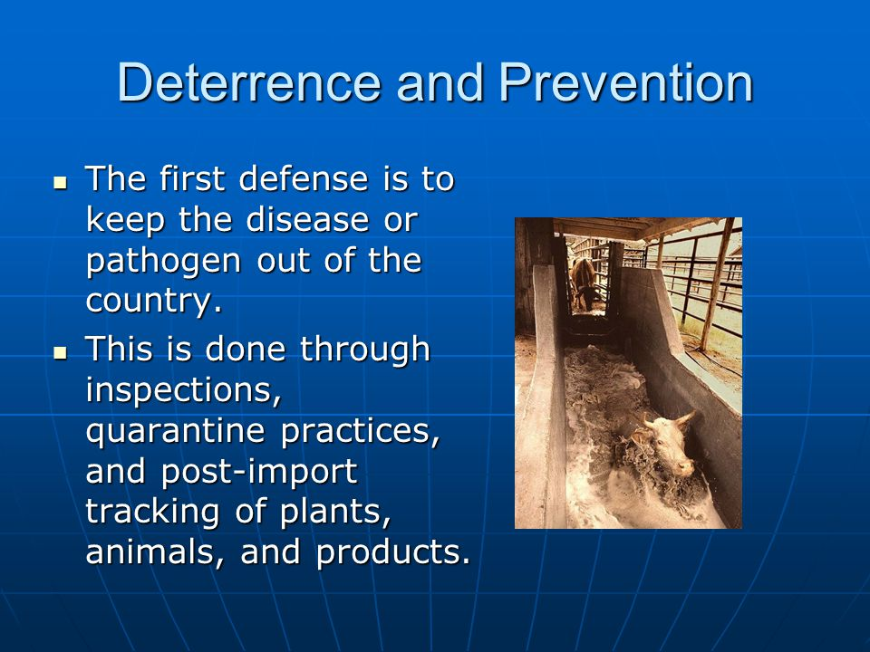 Deterrence and Prevention
