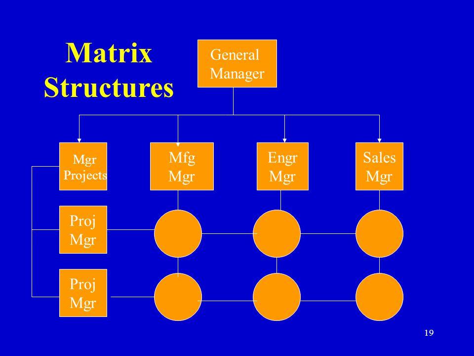 Matrix Structures General Manager Mfg Mgr Engr Mgr Sales Mgr Proj Mgr