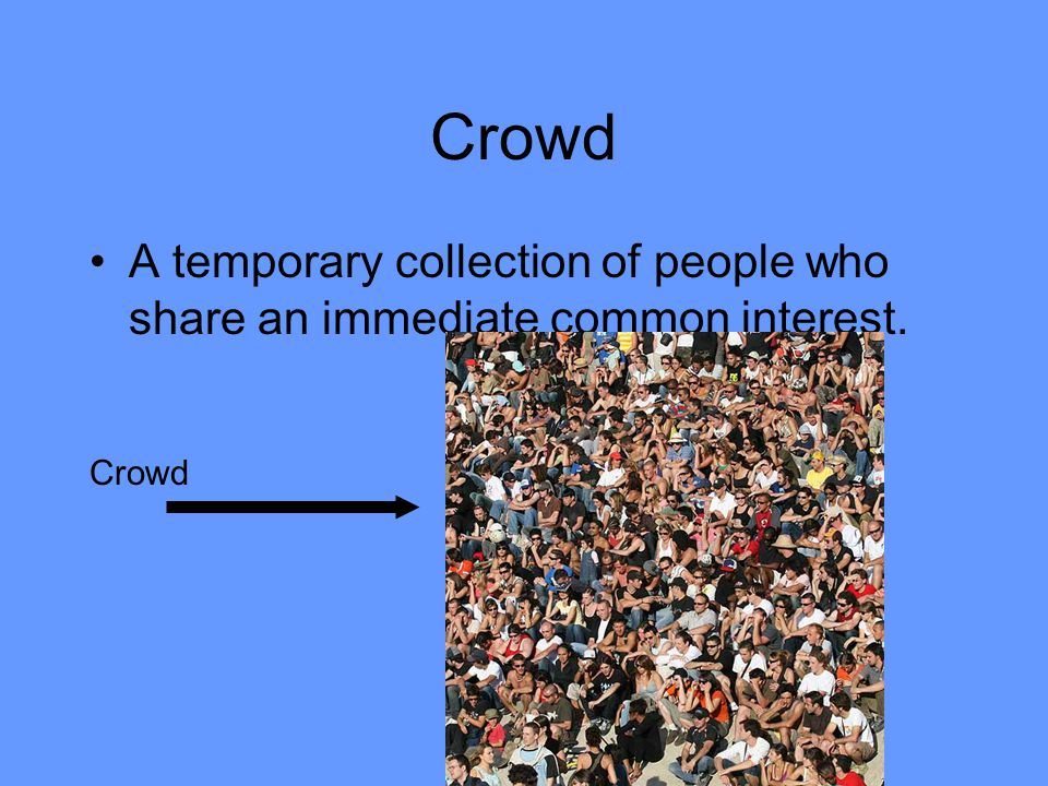Crowd A temporary collection of people who share an immediate common interest. Crowd