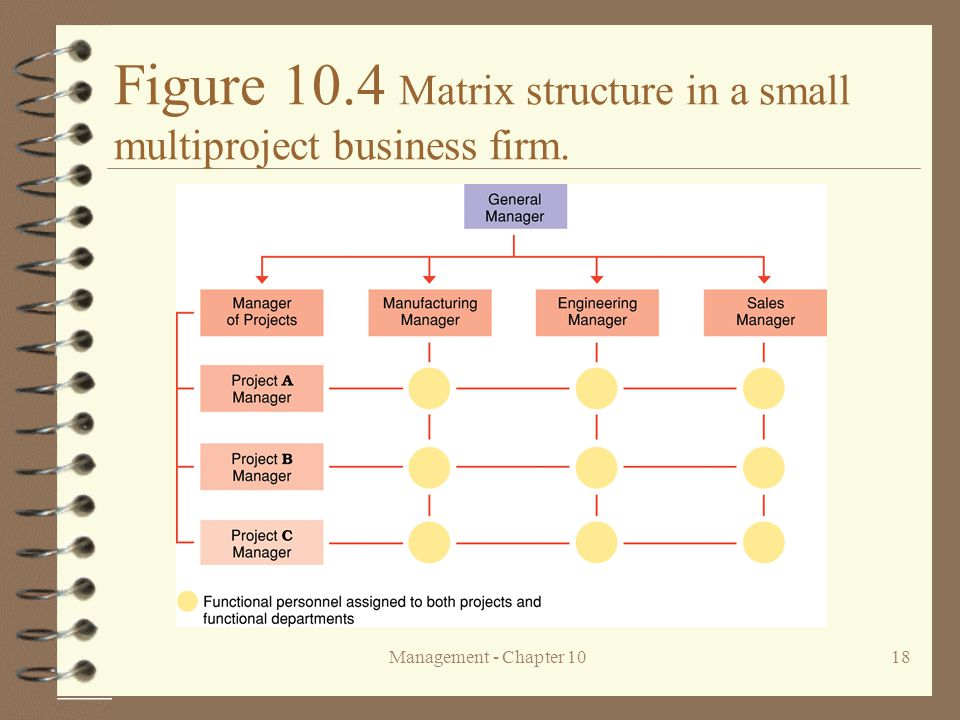 Figure 10.4 Matrix structure in a small multiproject business firm.