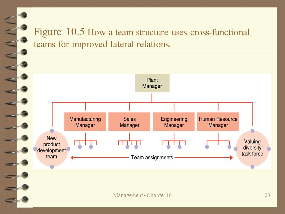 Figure 10.5 How a team structure uses cross-functional teams for improved lateral relations.