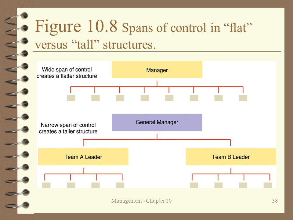 Figure 10.8 Spans of control in flat versus tall structures.