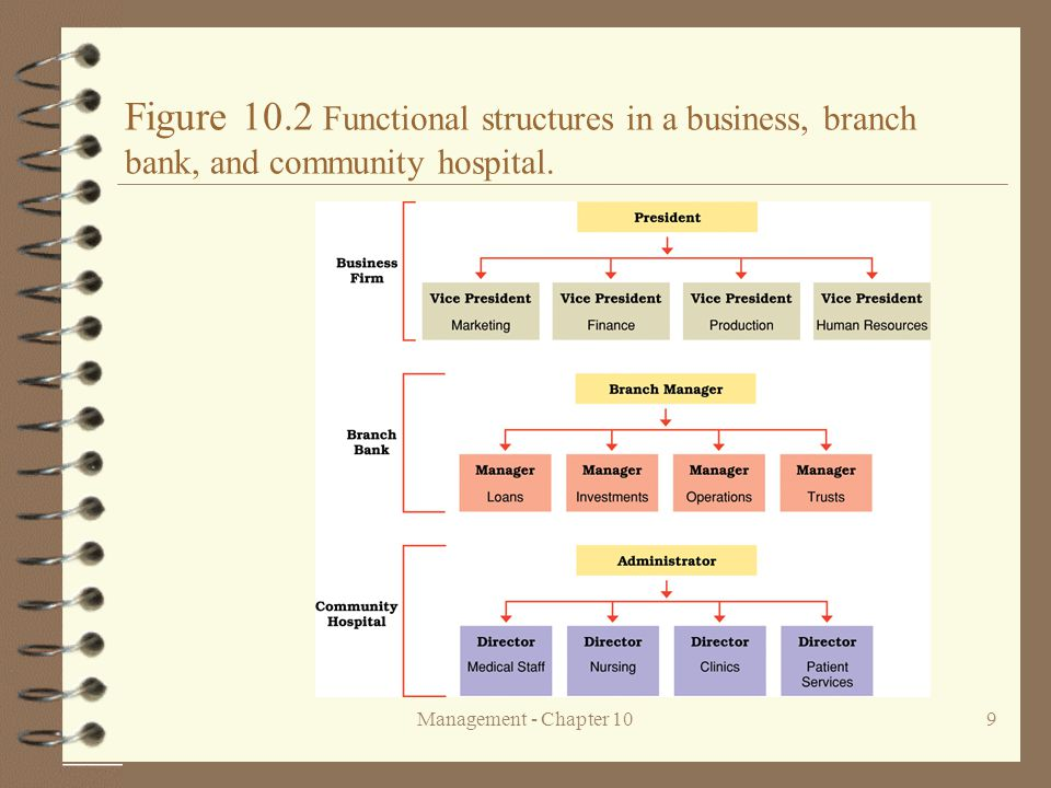 Figure 10.2 Functional structures in a business, branch bank, and community hospital.