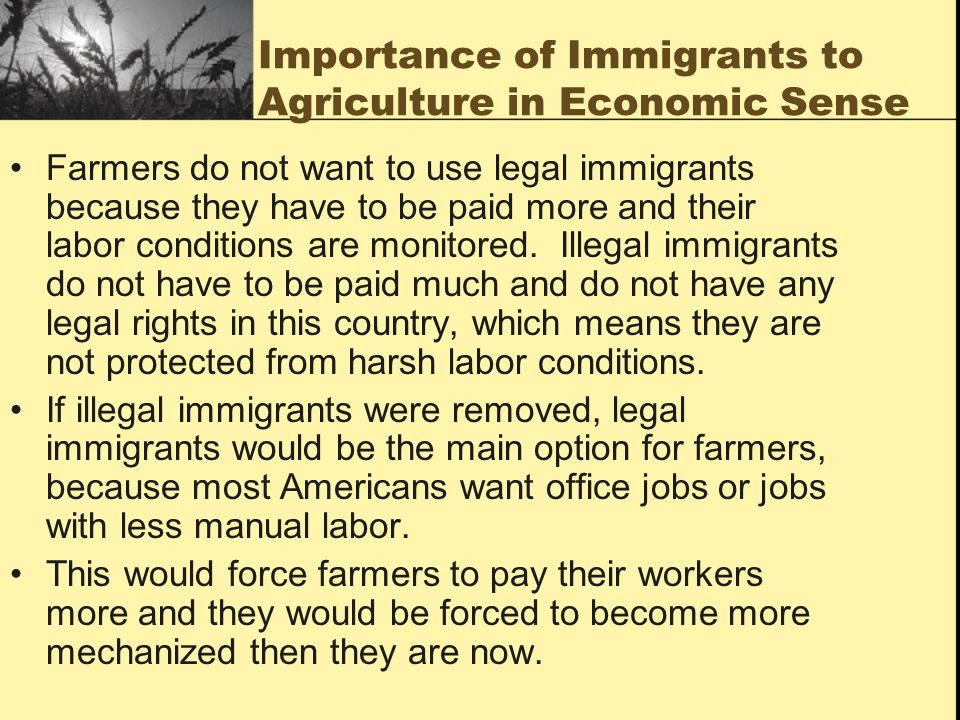 Importance of Immigrants to Agriculture in Economic Sense