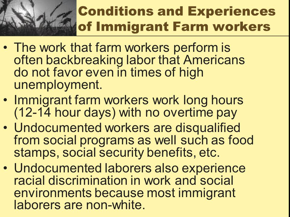 Conditions and Experiences of Immigrant Farm workers