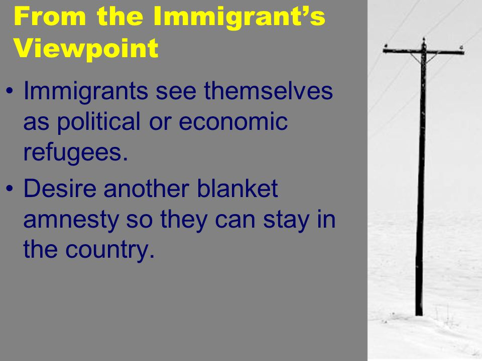 From the Immigrant's Viewpoint