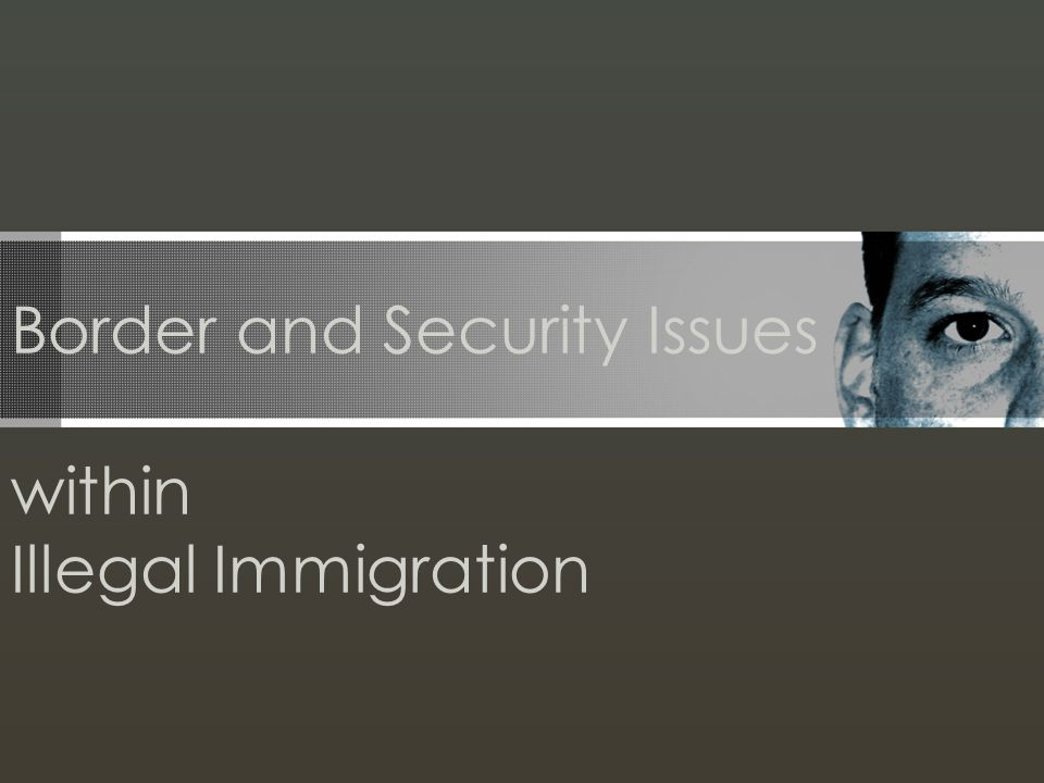 Border and Security Issues within Illegal Immigration