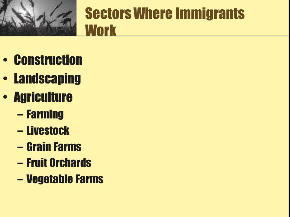 Sectors Where Immigrants Work