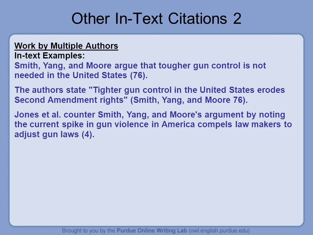 Other In-Text Citations 2