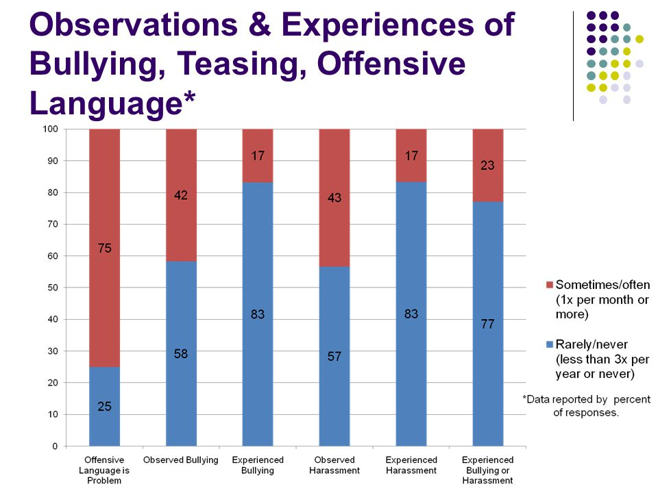 Observations & Experiences of Bullying, Teasing, Offensive Language*