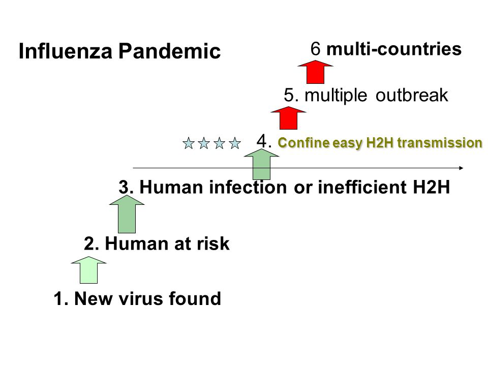 Influenza Pandemic 6 multi-countries 5. multiple outbreak