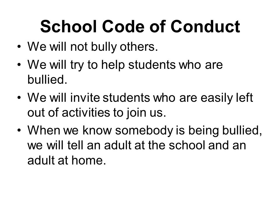 School Code of Conduct We will not bully others.