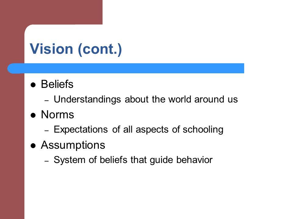 Vision (cont.) Beliefs Norms Assumptions