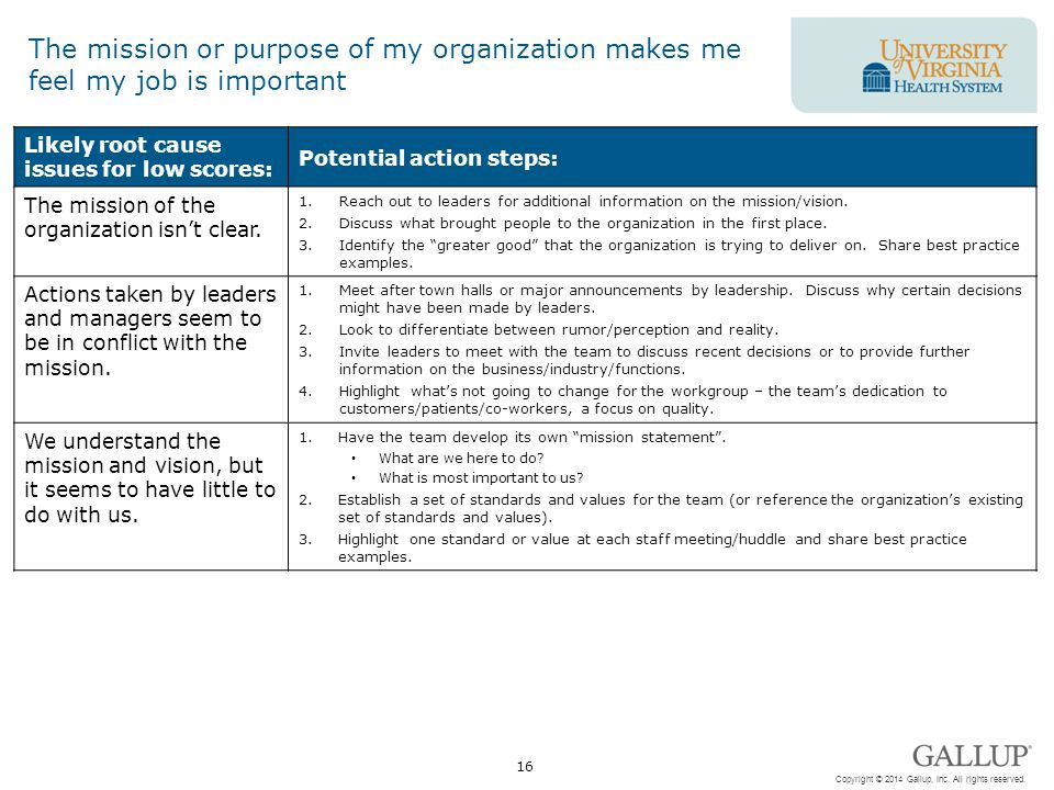 The mission or purpose of my organization makes me feel my job is important