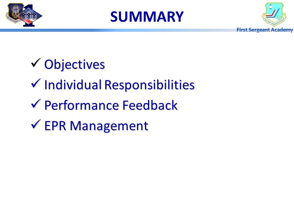 SUMMARY Objectives Individual Responsibilities Performance Feedback