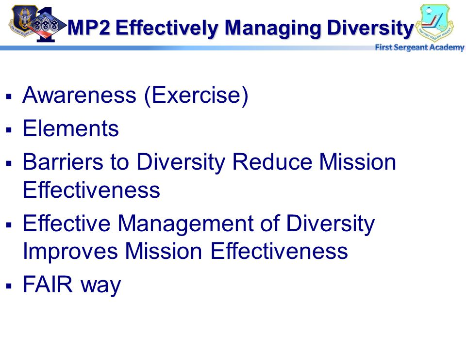 MP2 Effectively Managing Diversity