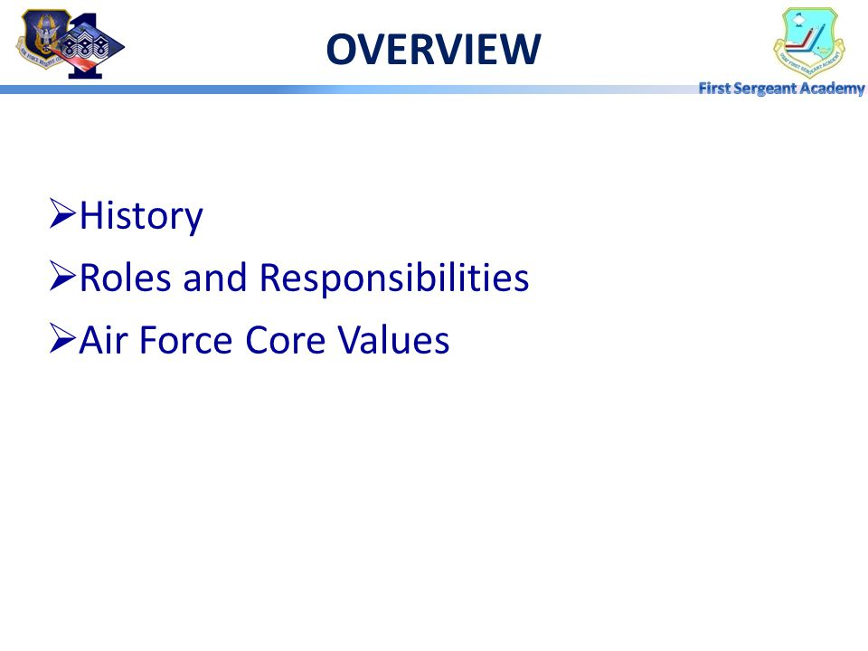 OVERVIEW History Roles and Responsibilities Air Force Core Values