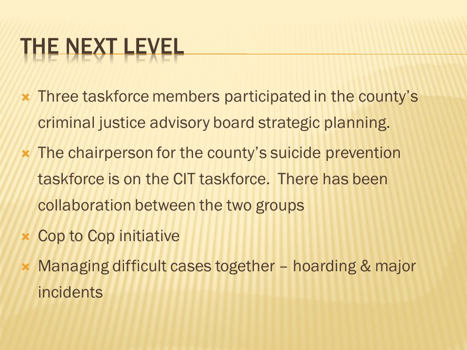 The next level Three taskforce members participated in the county's criminal justice advisory board strategic planning.