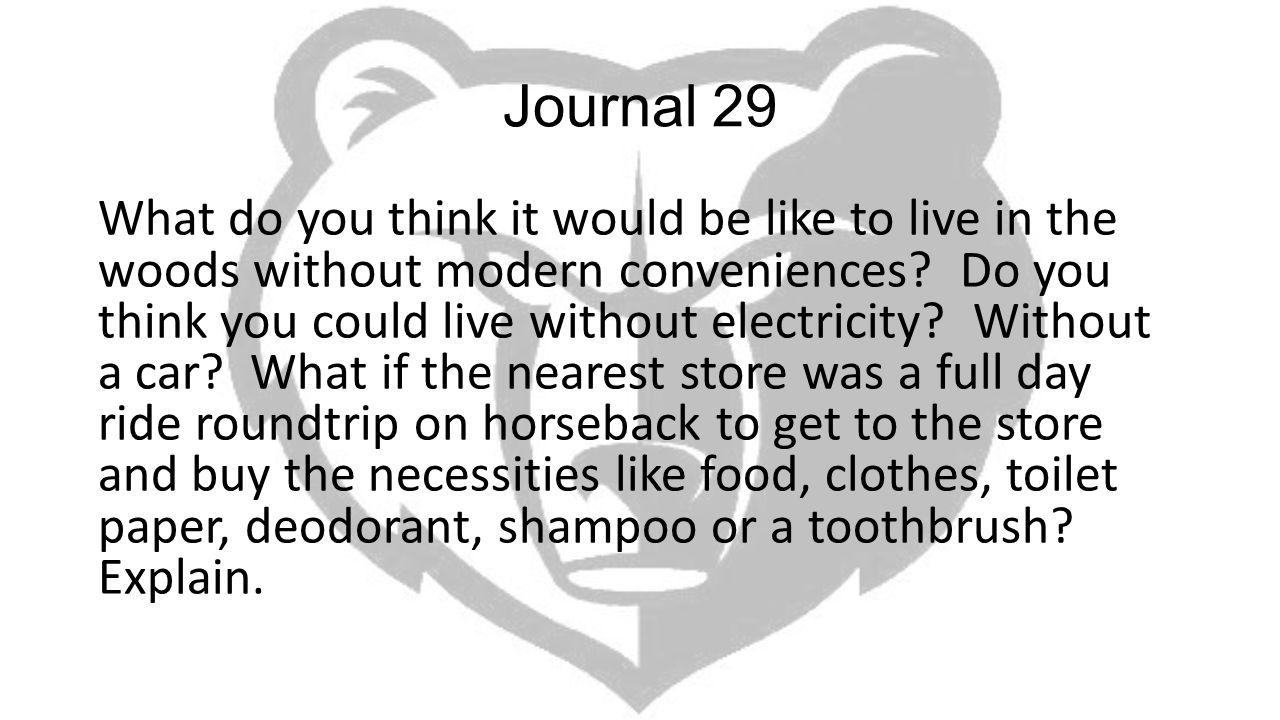 Journal 29